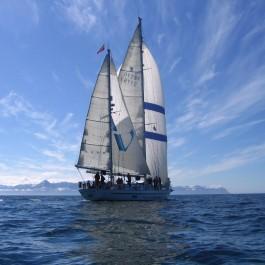 Alba Venturer Vessel in the Arctic Circle